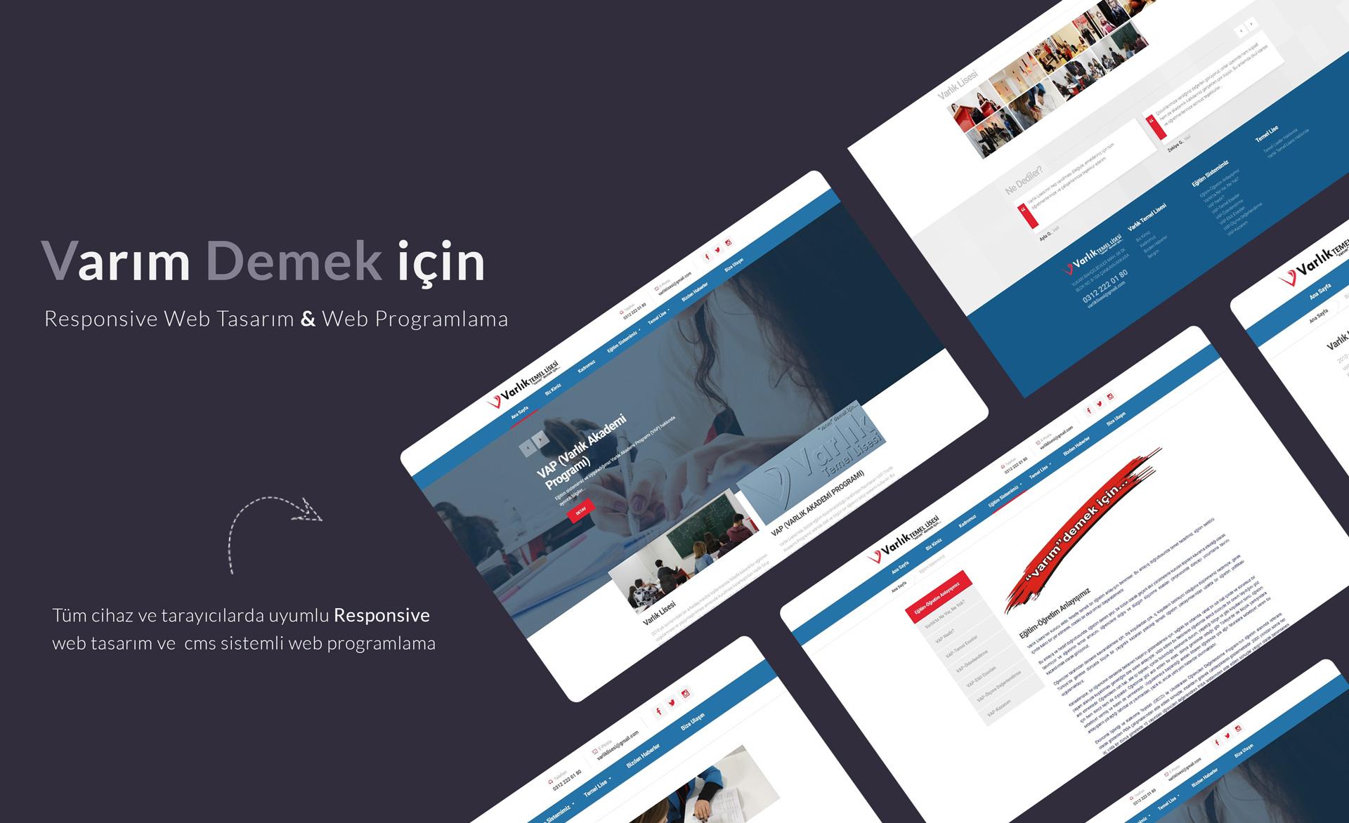 Web Tasarım, CMS, Web Programlama